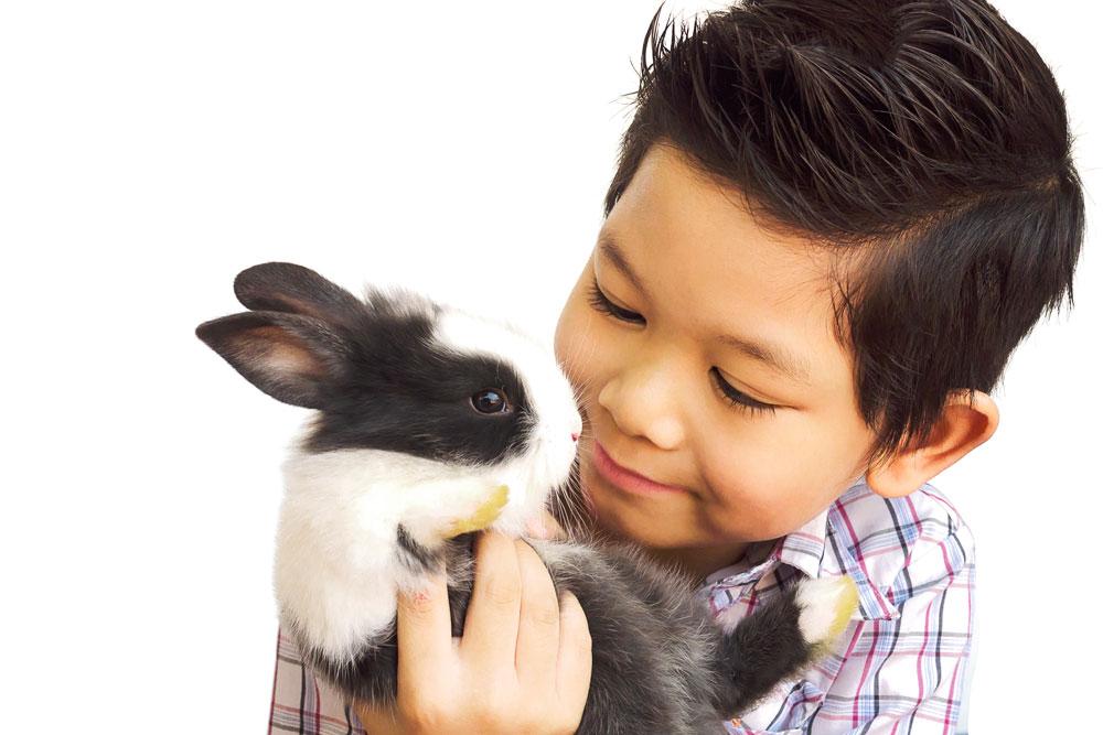 coniglio e bambino